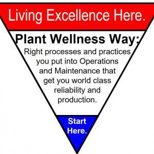 Plant Wellness Way Certified Practitioner Training Course